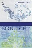<em>Bird Light</em>
